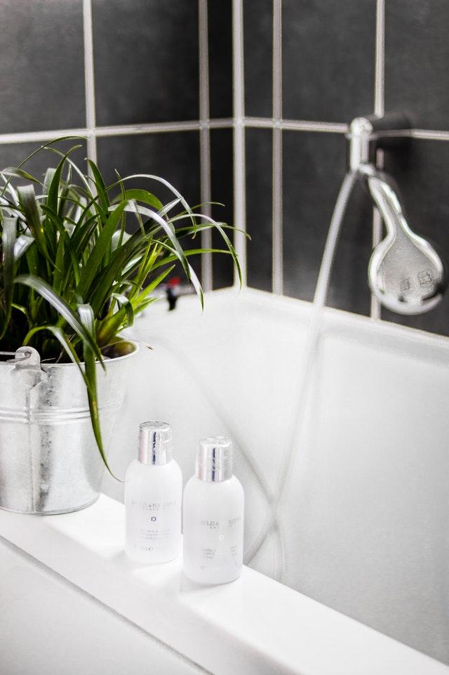świeże rośliny w łazience